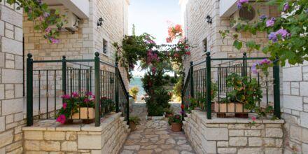 Hotellområdet på hotell Mikros Paradisos i Sivota.