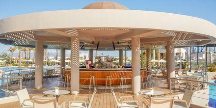 Poolbar på hotell Minoa Palace resort & Spa i Platanias på Kreta, Grekland.