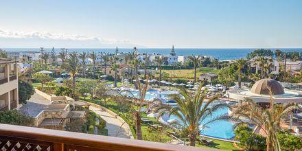 Dubbelrum på hotell Minoa Palace resort & Spa i Platanias på Kreta, Grekland.