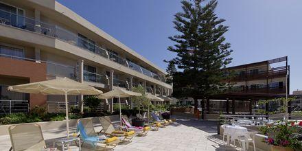 Solsängar på hotell Minos i Rethymnon, Kreta.