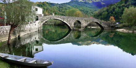 Byn Rijeka Crnojevića i Skadar Lake nationalpark, Montenegro.