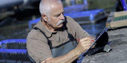 Fiskare vid sin fiskfarm, Montenegro.