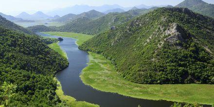 Del av Skadar Lake nationalpark.