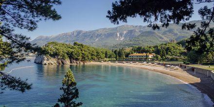 En av många små stränder längs Adriatiska kusten i Montenegro.