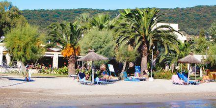 Mysig taverna vid stranden i Moraitika på Korfu, Grekland.