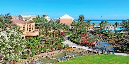 Hotell Mövenpick Resort & Spa i El Gouna, Egypten.