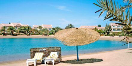 Hotellets strand på Hotell Mövenpick Resort & Spa i El Gouna, Egypten.