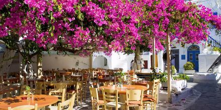 Mykonos, Grekland.