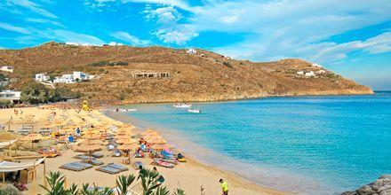 Super Paradise Beach på Mykonos, Grekland.