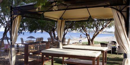 Massage vid stranden på hotell Mythos Beach Resort i Afandou, Rhodos.
