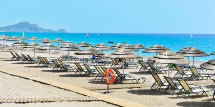 Stranden vid hotell Mythos Beach Resort i Afandou, Rhodos.