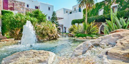 Trädgård på Naxos Resort, Grekland.