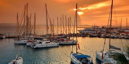 Hamnen i Naxos stad i Grekland.