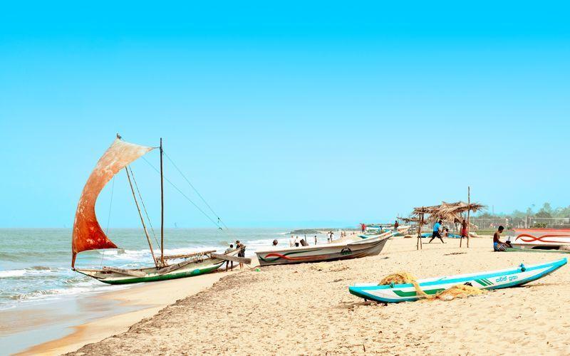 Fiskebåtar på i Negombo på Sri Lanka.