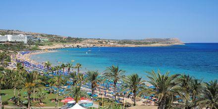 Hotell Nelia Beach i Ayia Napa, Cypern.