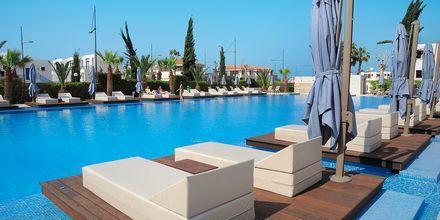 Poolområdet på hotell Nestor i Ayia Napa, Cypern.