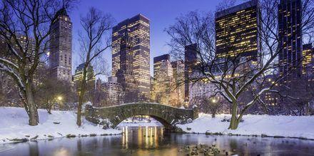 Central Park är en fröjd för ögat även under vintern.