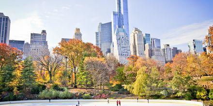 Skridskoåkning i Central Park.