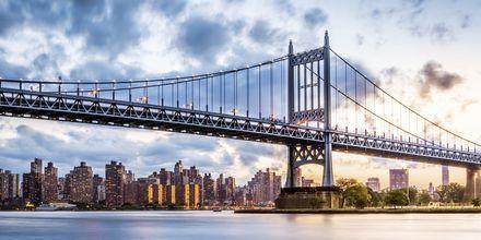 Manhattan är indelat i Uptown, Midtown och Downtown.