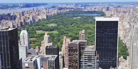 Utsikt över Central Park i New York, stadens gröna oas.