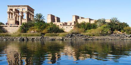 Utflykt till Philaetemplet i Aswan.