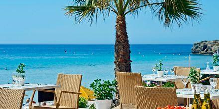 Poolbaren på hotell Nissi Beach i Ayia Napa, Cypern.
