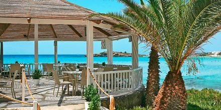 Strandbaren vid hotell Nissi Beach i Ayia Napa, Cypern.