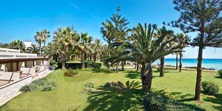 Hotell Nissi Beach i Ayia Napa, Cypern.