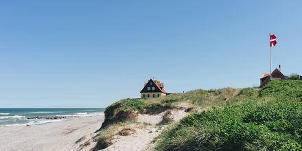 Nordjylland och Vesterhavet