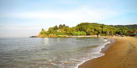 Baga Beach i norra Goa, Indien.
