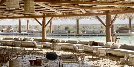 Poolbar på hotell Olea All Suite i Tsilivi på Zakynthos, Grekland.