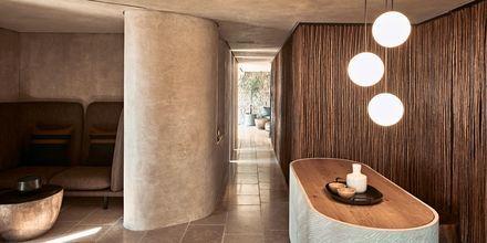 Reception på hotell Olea All Suite i Tsilivi på Zakynthos, Grekland.