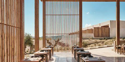 Restaurang på hotell Olea All Suite i Tsilivi på Zakynthos, Grekland.