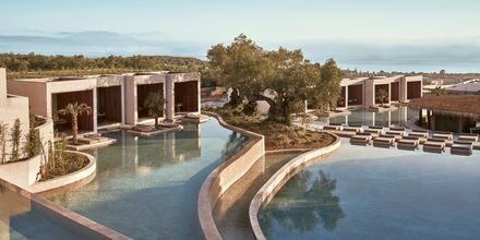 Poolområdet på hotell Olea All Suite i Tsilivi på Zakynthos, Grekland.