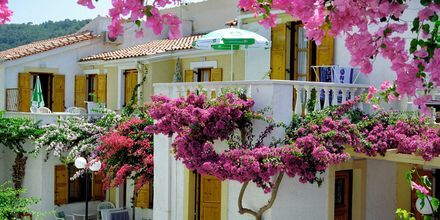 Lägenhetshotell Olympia Village i Kokkari, Samos.
