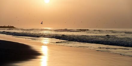Solnedgång i Salalah, Oman.