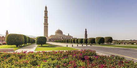 Grand moské i Muskat, Oman.
