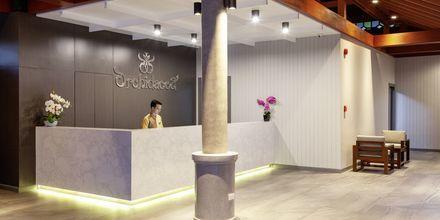 Reception på Orchidacea Resort vid Kata Beach, Phuket, Thailand.