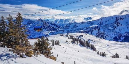 Skidorten Tyrol erbjuder en fantastisk skidsemester.