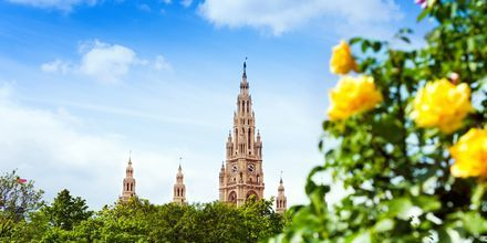 Välkommen till Wien, Österrikes huvudstad!