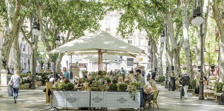 Passeig del Born i Palma stad, Mallorca.