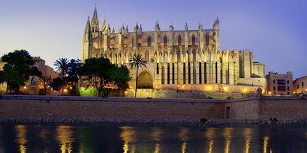 La Seu i Palma de Mallorca på kvällen.