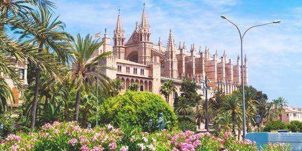 Palma de Mallorca är huvudstad på de baleariska öarna.