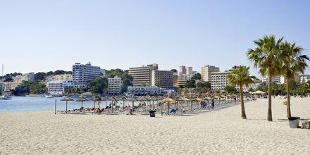 Stranden i Palma Nova på Mallorca, Spanien.