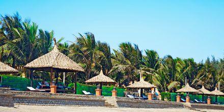 Stranden vid hotell Pandanus Resort, Phan Thiet.
