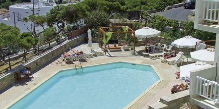 Poolen på hotell Pandrossos på Paros i Grekland.