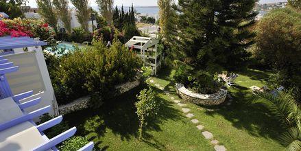 Utsikt från hotell Panorama i Paikia på Paros.