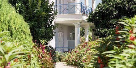 Lummiga omgivningar på hotell Paradise Ammoudia i Grekland.