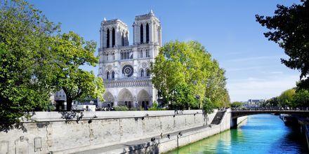 Notre Dame i Paris, Frankrike.