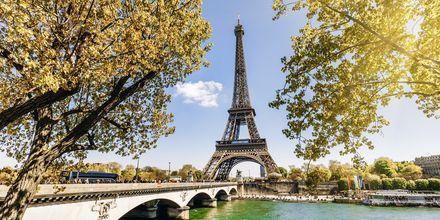Höst i Paris, kan det bli mer romantiskt?